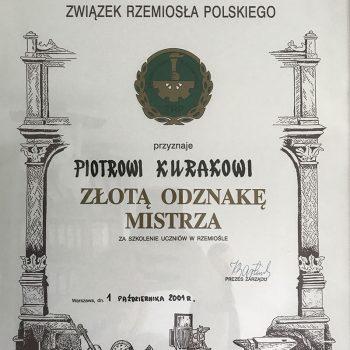 Złota Odznaka Mistrza